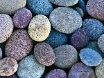 春の石材展示会 平成30年5月25日~26日開催