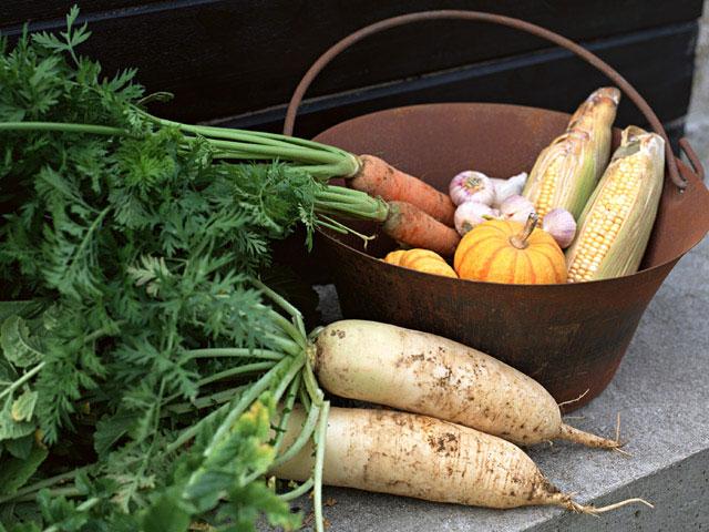 家庭菜園「2021年11月号」を更新しました。